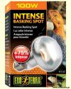 Żarówka Sun Glo Intense Basking Spot 100W [100-722138-00]
